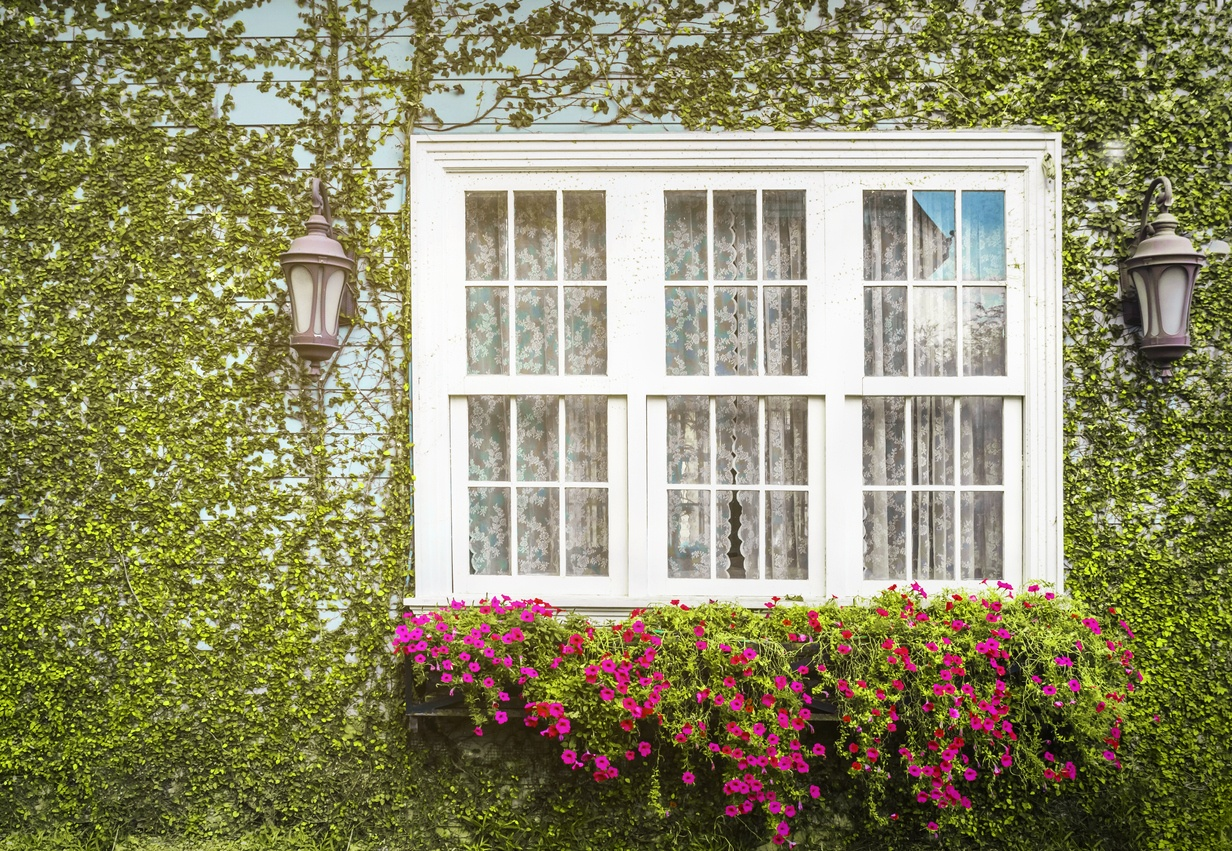 how-much-are-double-glazed-sash-windows